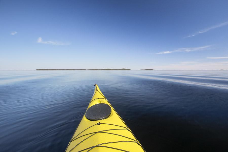melonta suur-saimaa saimaa Valley Avocet kayaking taipalsaari kajakki