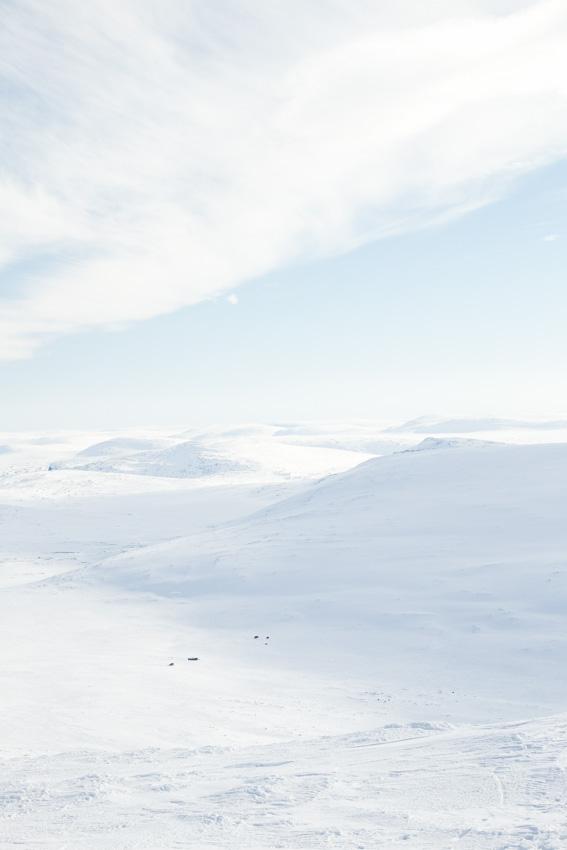 On the top of Halti fell hiihtovaellus talvivaellus