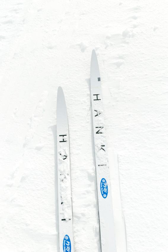 Hanki Pyry sukset metsäsukset ski backcountry skis lumi