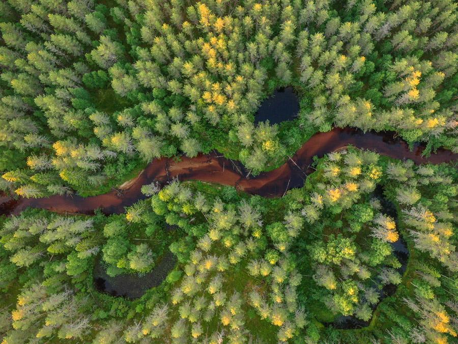 Suomunjoki (Suomu river) ilmakuva drone Patvinsuo National Park