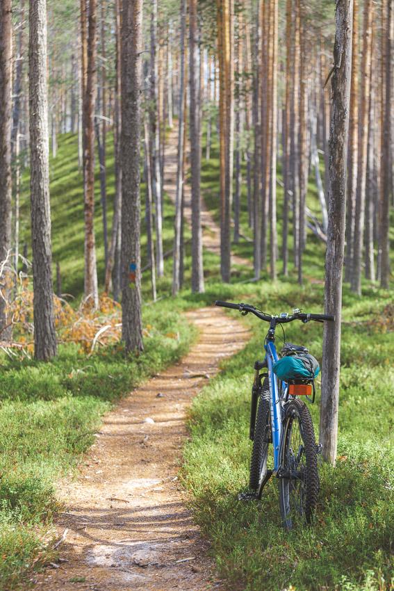 Huosiharju mtb route mountain biking maastopyöräilyreitti maastopyöräily Hossa