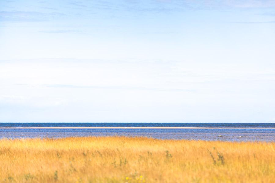 Vihaspauha, Kalajoki