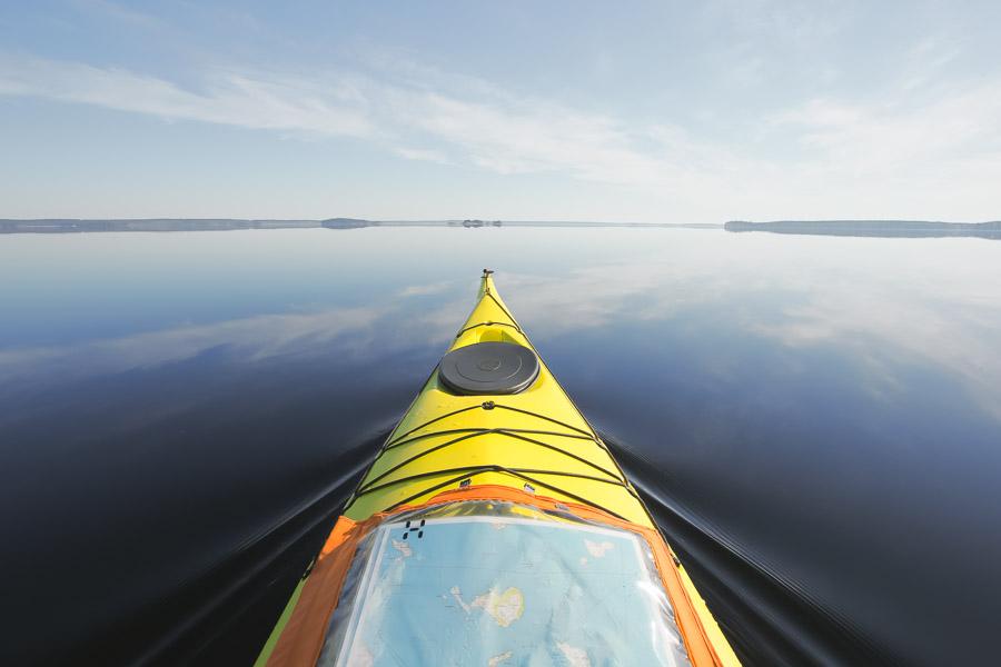 Valley Avocet melonta suur-saimaa saimaa kayaking taipalsaari