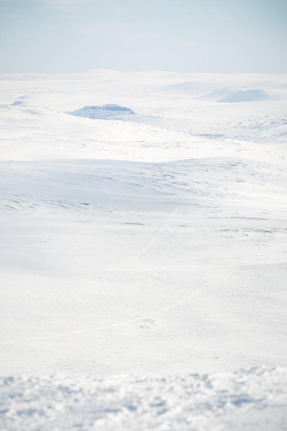 View towards Pitsusjärvi and Saivaara from Halti