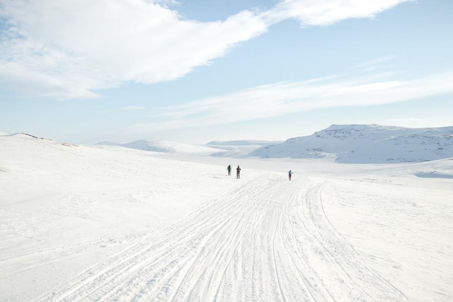 Back to Pitsusjärvi