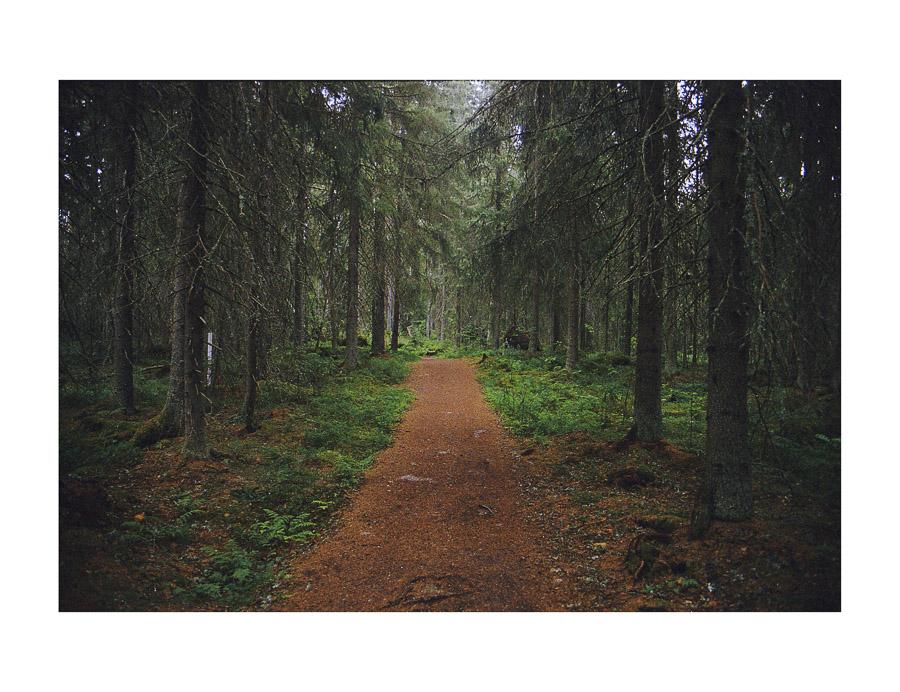 Helvetinjärven kansallispuisto vaellus Helvetinjärvi National park